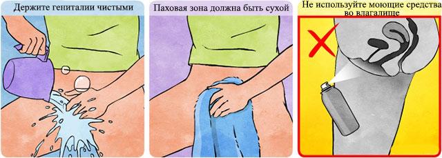 Суточный объем мочи при беременности
