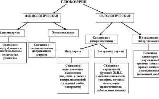 Глюкозурия — серьезный признак нарушения работы почек
