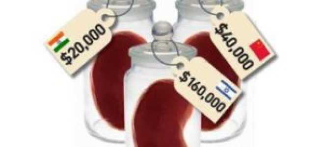 Как и где продать почку, какая ее стоимость и насколько долго проходит восстановление после процедуры
