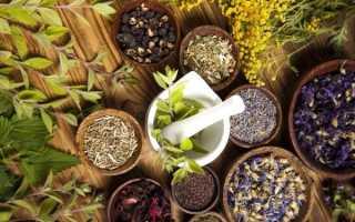 Лечение простатита с помощью растений