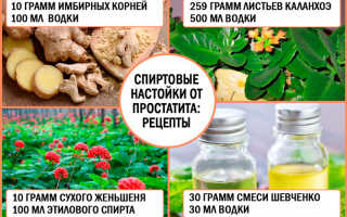 Травы от простатита: самые эффективные рецепты и лечение