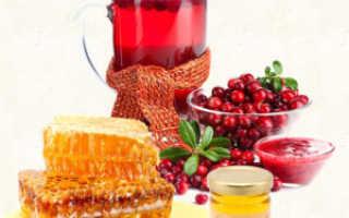 Показания и противопоказания к применению клюквы с медом для лечения почек